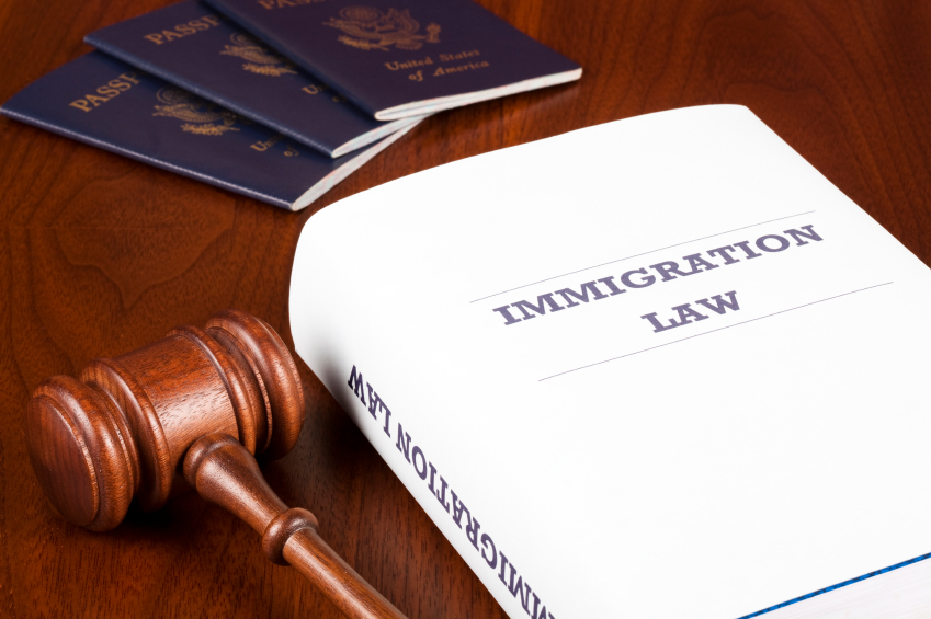 Immigration Representation and the Rule of Law | Ford Scholars