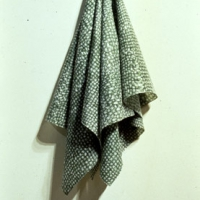 Green Hanging Cloth