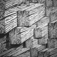 Cracked Lumber (Detail)