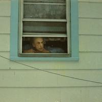 Cornell in the Window