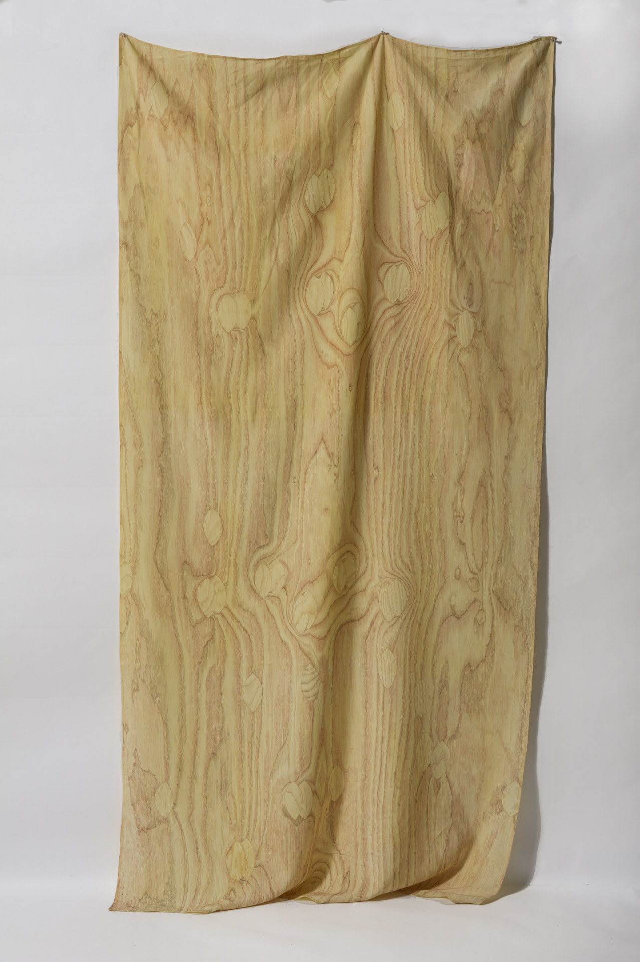 29 Draped Plywood 3 (smaller for site)
