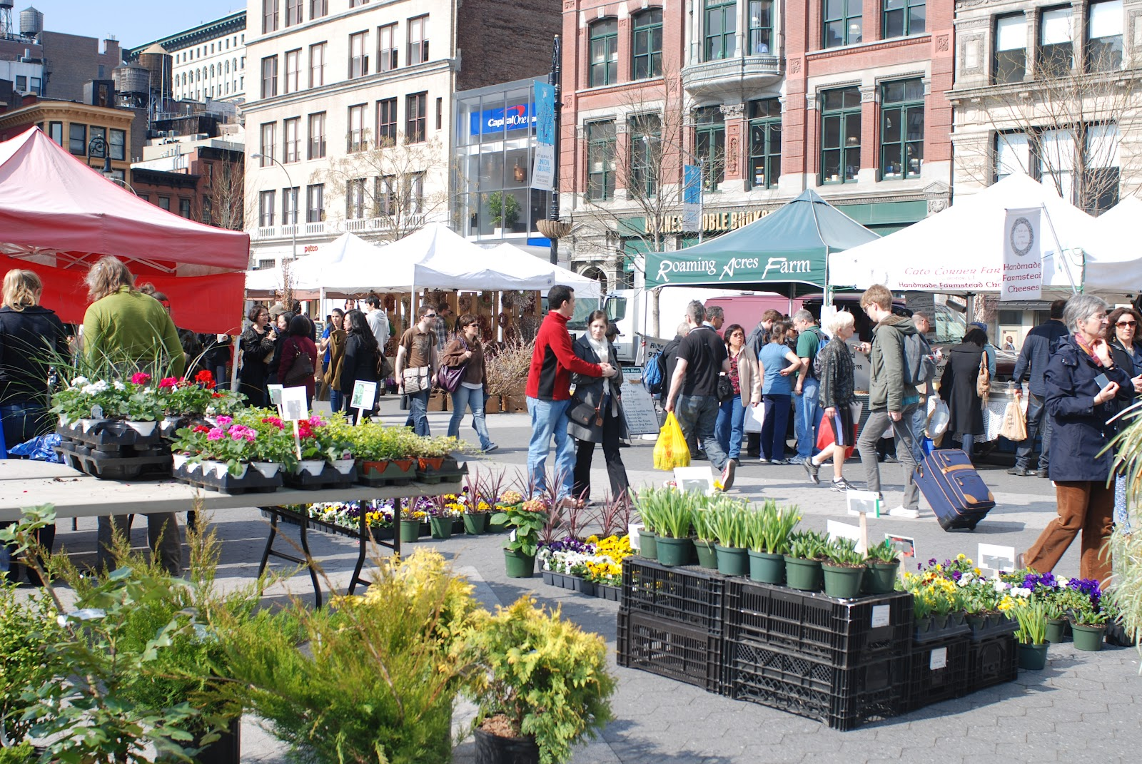 Image result for 14th street green market christmas