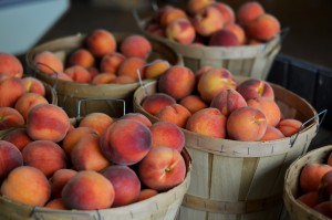 Fishkill Farms Peaches