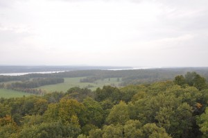 View from Ferncliff's fire tower.