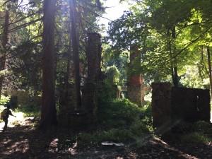 Cornish ruins