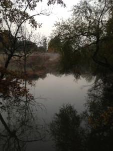 A misty pond next to the rail trail.