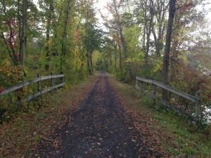 Fall foliage along the trail.