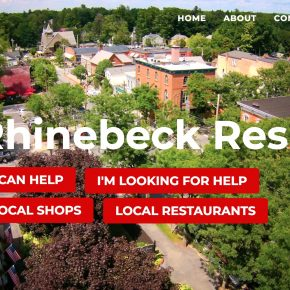 economic impacts of the coronavirus pandemic: the Rhinebeck small business survey
