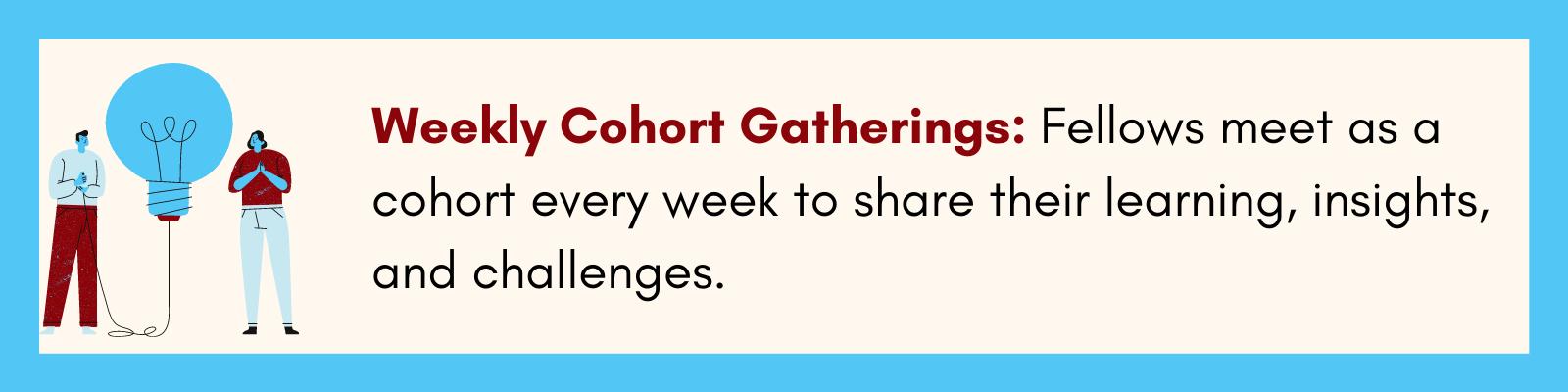 cohort meetings