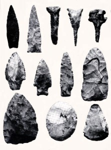 This illustration of stone tools found in Goat Bluff Cave shows the variety of the stone tool category.