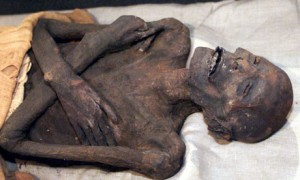 mummy460