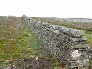 A dry stone wall similar to the ones we found