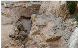 The cave site of El Salt during excavation.