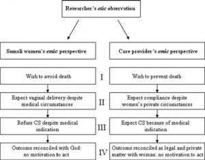 An anthropological analysis of the perspectives of Somali women in the West and their obstetric care providers on caesarean birth