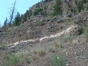 The ash layer is visibly lighter in color compared to the surrounding sediment layers