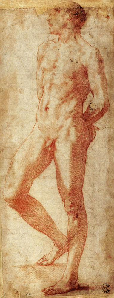 D.7 Standing Male Nude