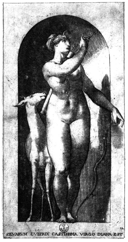 E.37 Caraglio, Diana