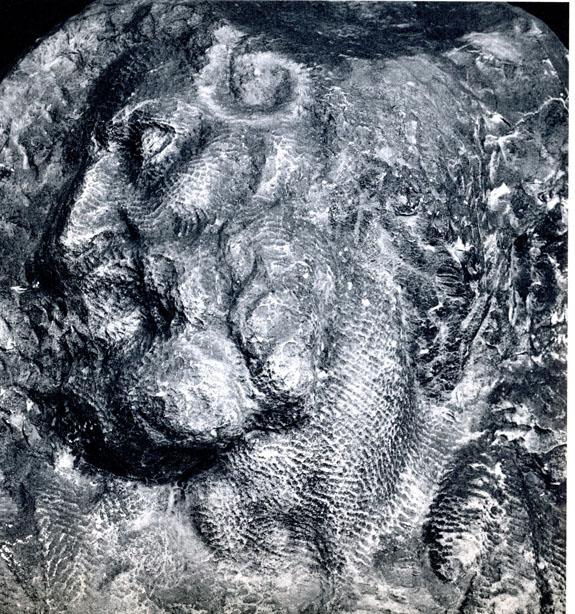 St. Matthew, head