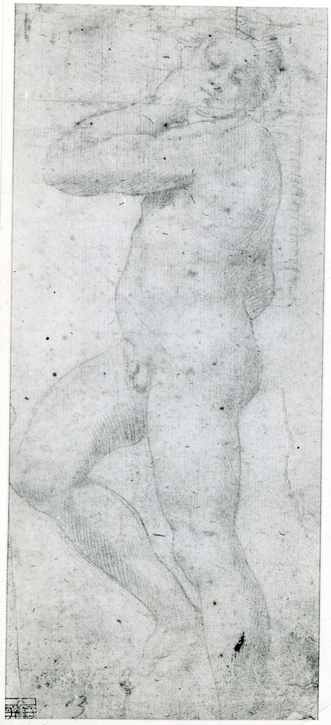 D.24 Copy of Michelangelo's David-Apollo