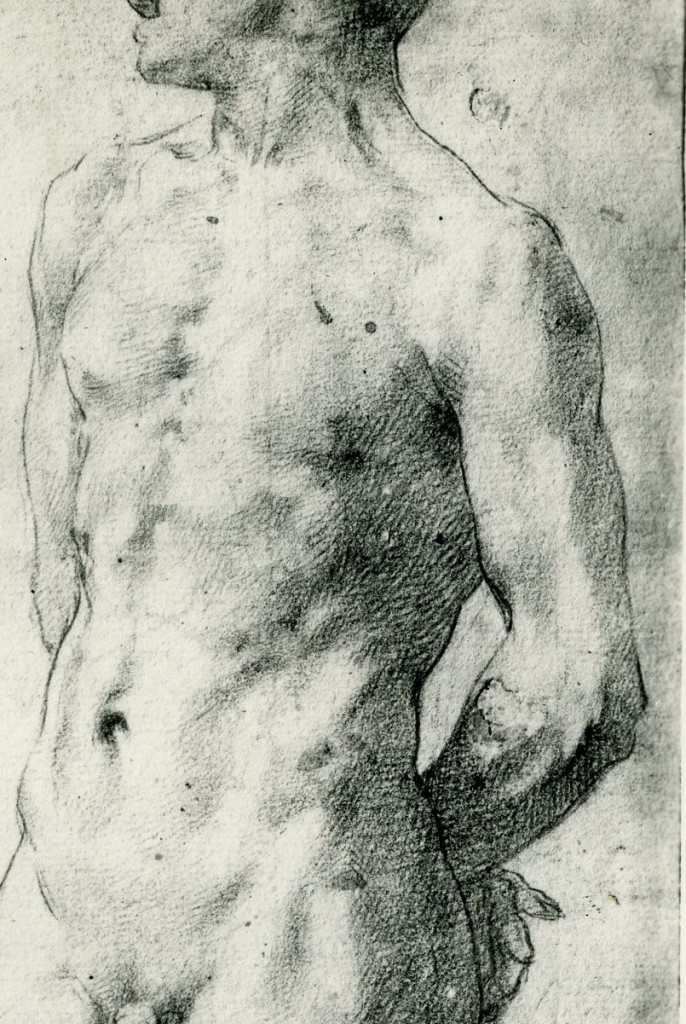 Fig.D.7, Standing Male Nude, detail